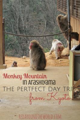monkey-mountain