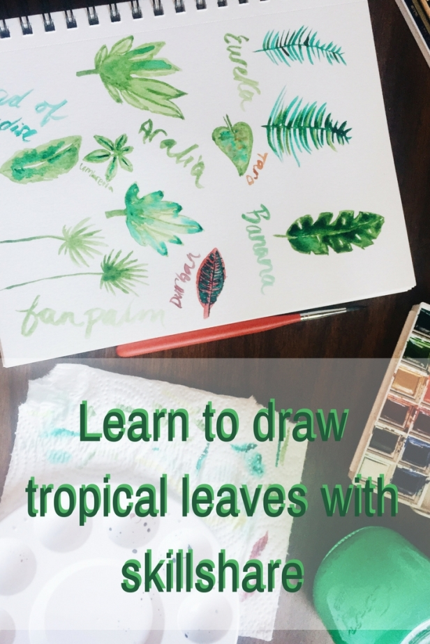 Learn to draw tropical leaves with skillshare